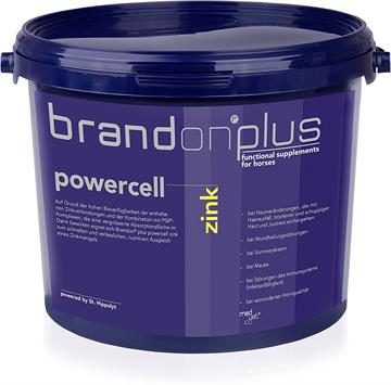 Brandon Powercell Zink