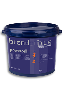 Brandon Powercell Kupfer