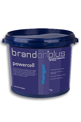 Brandon Powercell Mangan