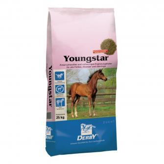 Derby Youngstar
